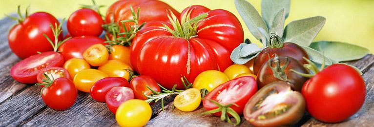 Tomaten-Tipps
