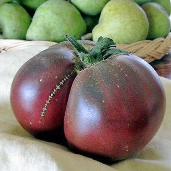 Brandywine Black Tomaten Samen